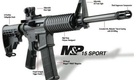 Smith and Wesson MP15 Sport II On Sale – Ended