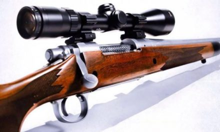 Bolt Action Rifle 101