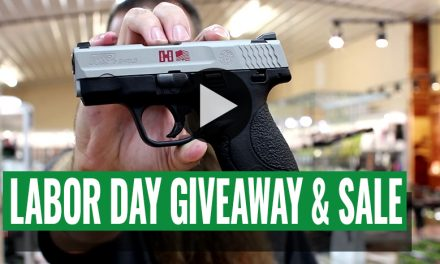 Labor Day Giveaway and Sale!