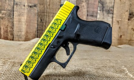 RAFFLE: MO Southern Glock 43 for Plantplants.org $10 PER CHANCE